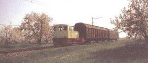 Figura 11 - Uno degli ultimi convogli merci. Anno 1981